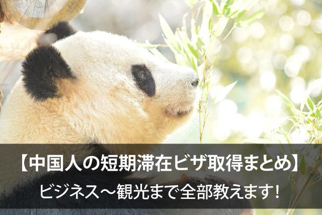 【中国人の短期滞在ビザ取得まとめ】ビジネス~観光まで全部教えます!