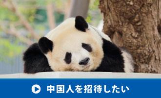 中国人を日本へ招待したい