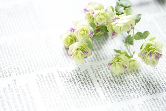 【リアルなビザ取得記録 Vol.20】カンボジア人の彼女を結婚手続きのため招待編