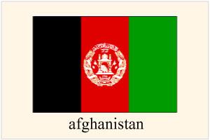 アフガニスタン人を日本へ呼ぶ