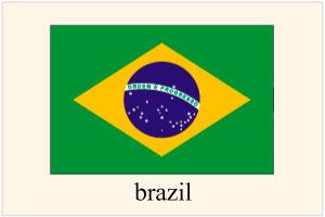 ブラジル人を日本へ呼ぶ