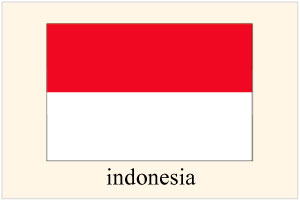 インドネシア人を日本へ呼ぶ
