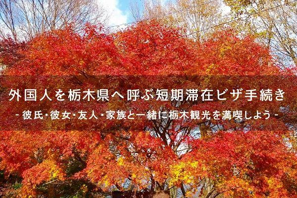 外国人を栃木へ呼ぶ