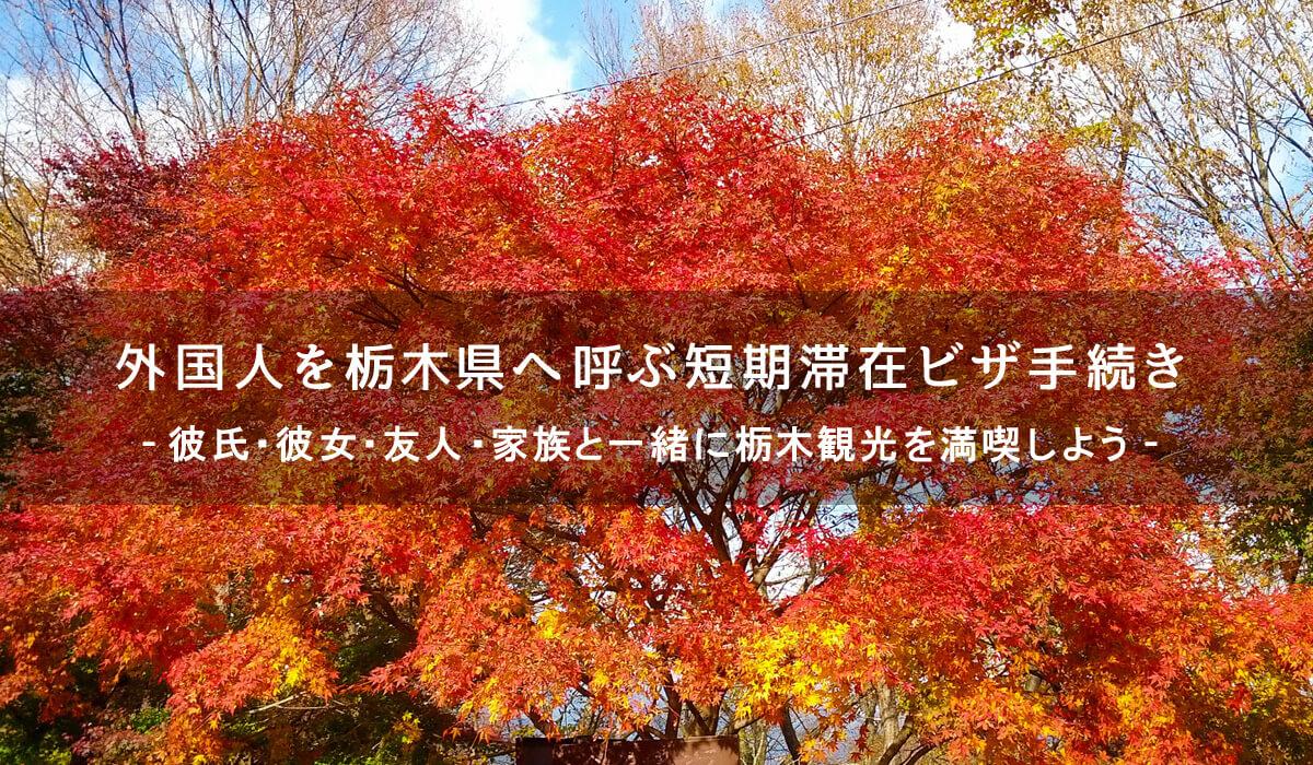 外国人を栃木へ呼ぶための短期滞在ビザ手続き